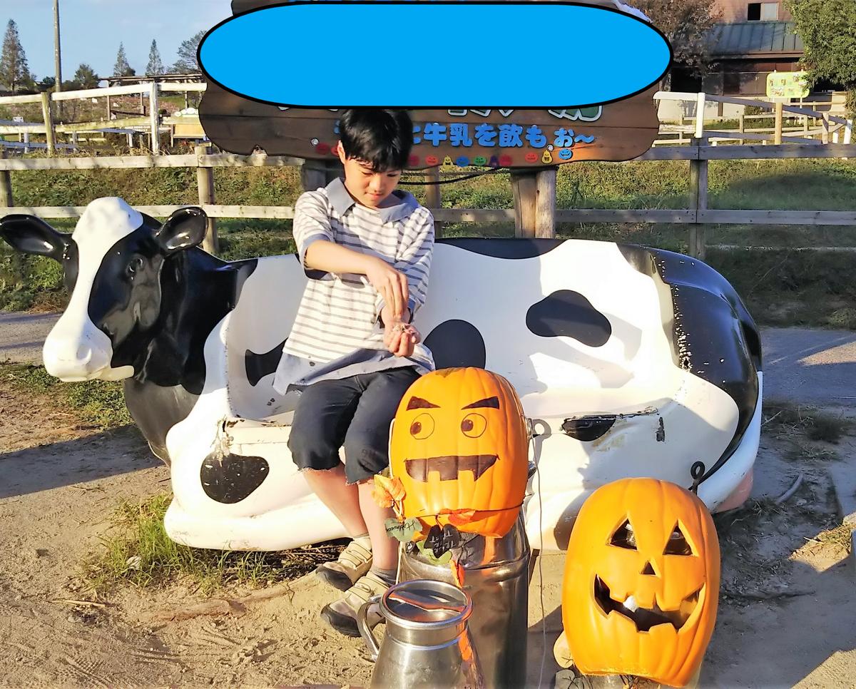 f:id:yamamomokobaru:20201013135945p:plain