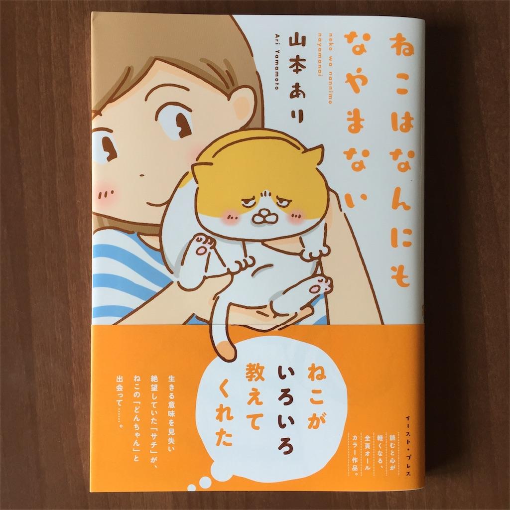 f:id:yamamotoari:20170531214540j:image