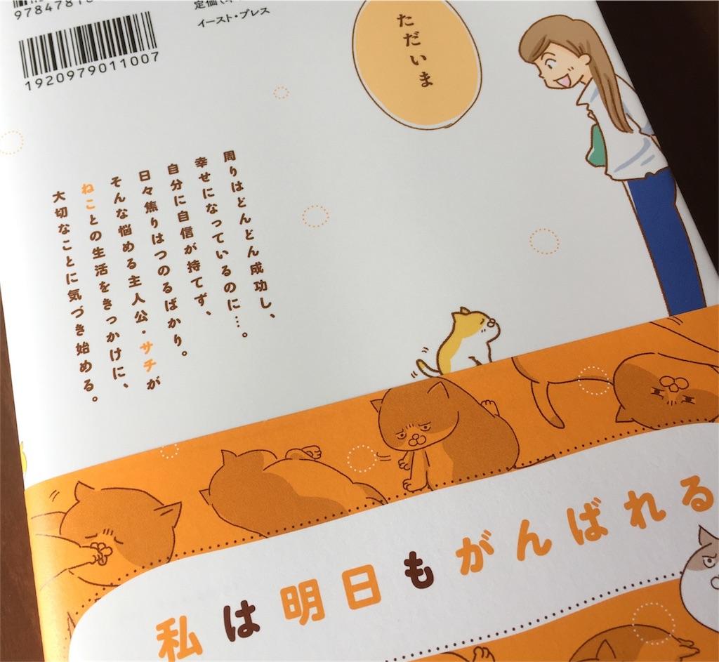 f:id:yamamotoari:20170531214611j:image