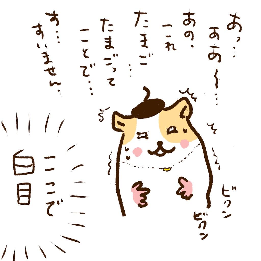 f:id:yamamotoari:20200204091735j:image