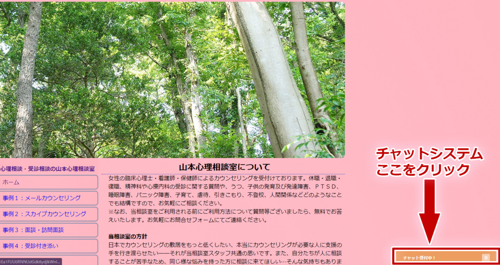 f:id:yamamotoshinri:20171023215407j:plain