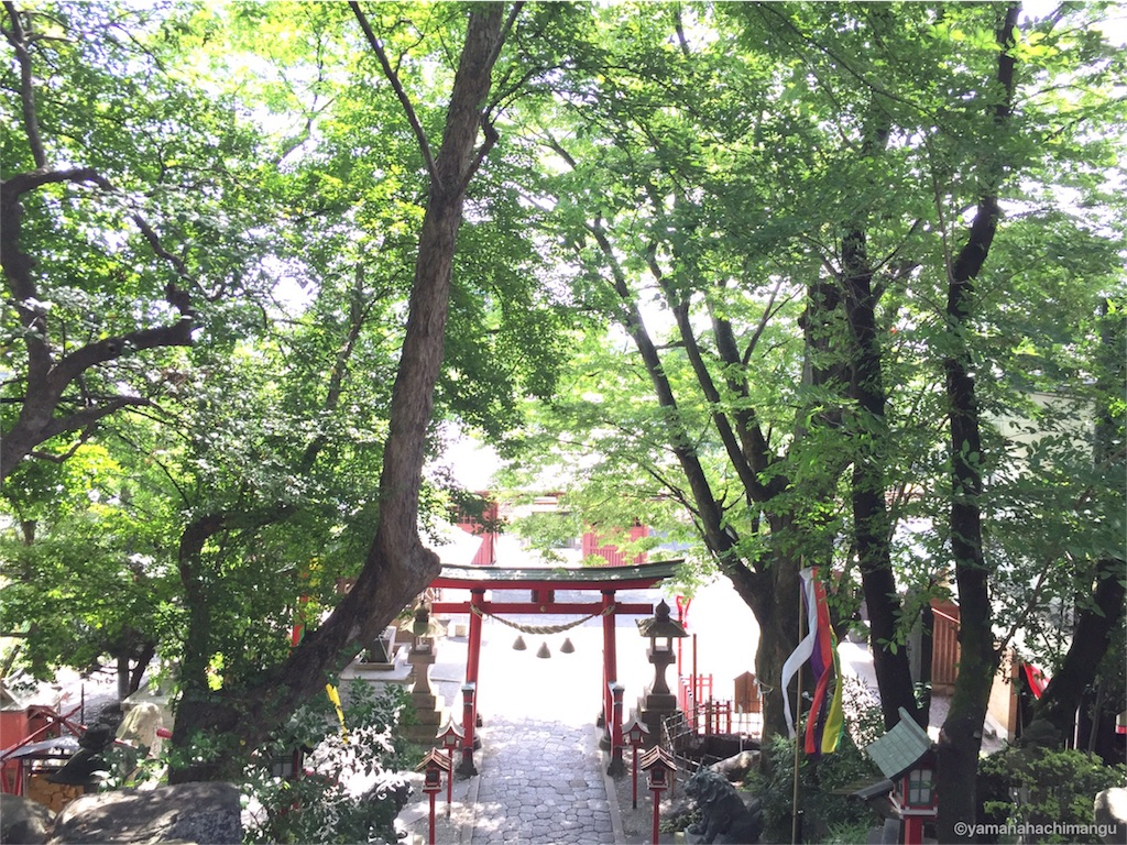 f:id:yamana8mangu-takasaki:20160601184913j:image