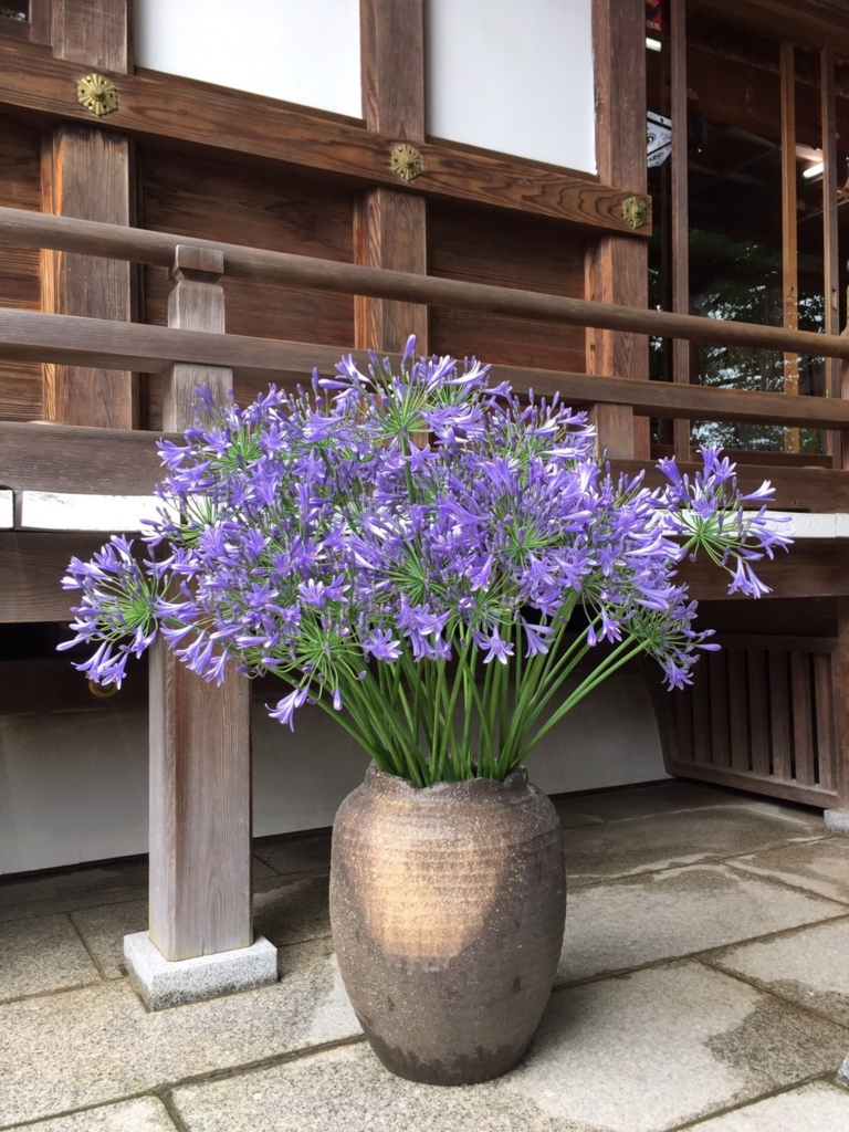 f:id:yamana8mangu-takasaki:20160626151641j:plain