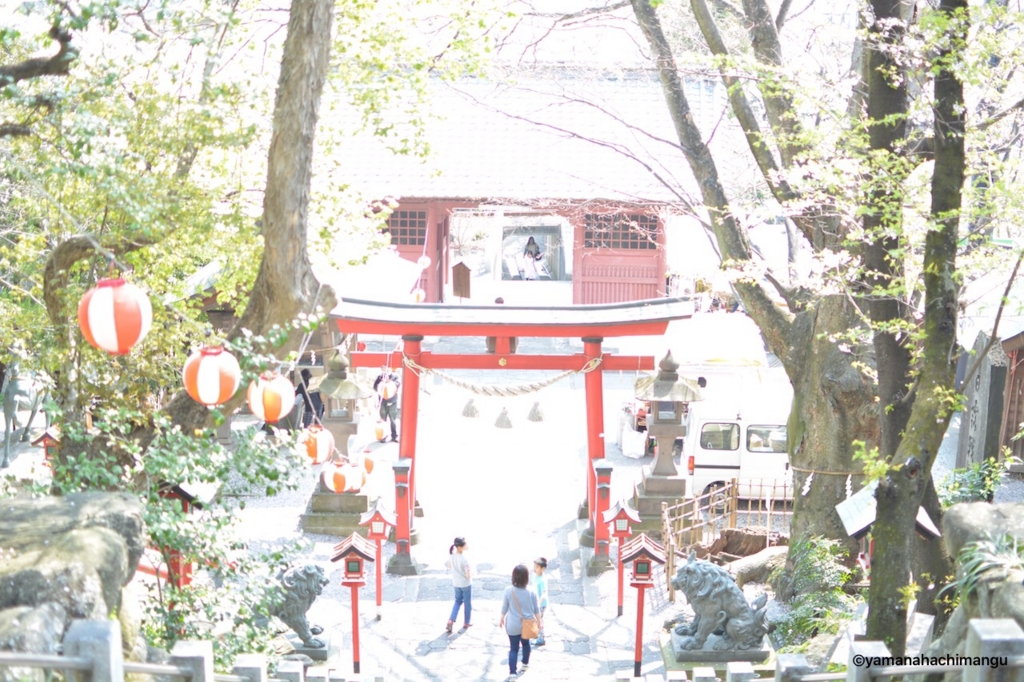 f:id:yamana8mangu-takasaki:20170418151551j:plain:w500