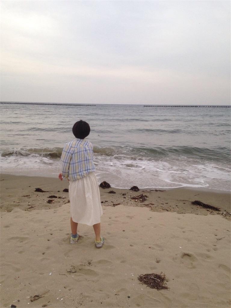 f:id:yamanakau014mb:20170516011235j:image