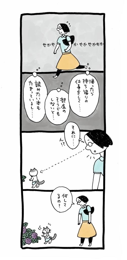 f:id:yamanaonao:20170611200421j:plain