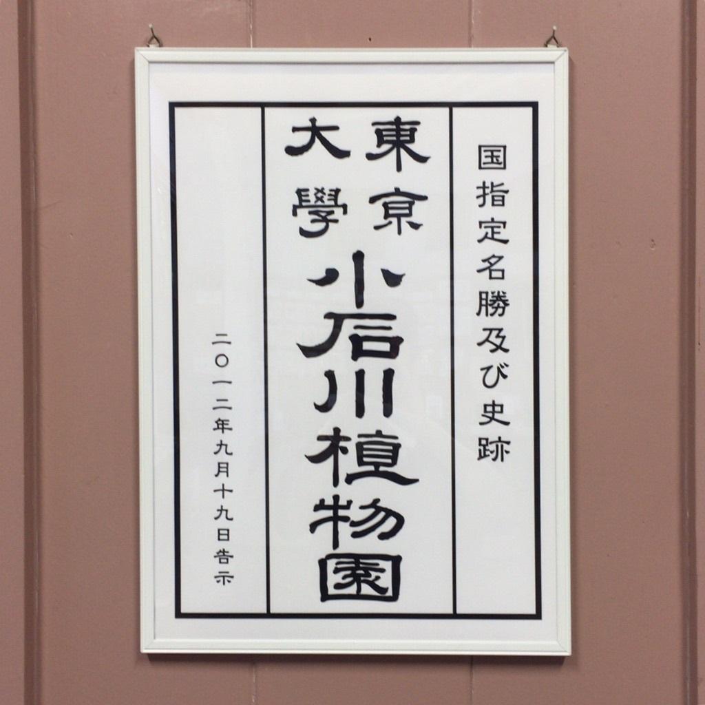 f:id:yamanaonao:20170621170034j:plain