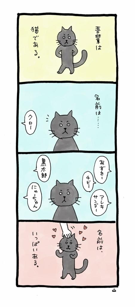 f:id:yamanaonao:20170625140654j:plain