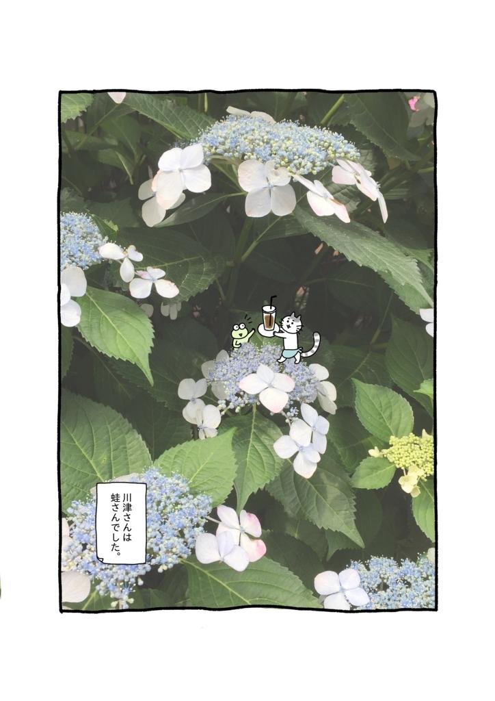 f:id:yamanaonao:20180603165243j:plain