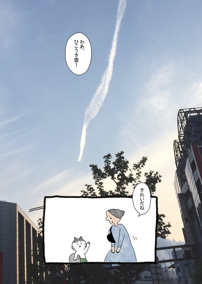 f:id:yamanaonao:20190519220851j:plain