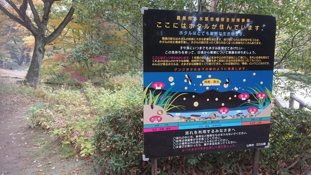 f:id:yamanashiiori:20171121174935j:plain
