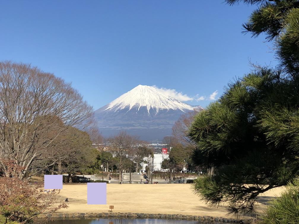 f:id:yamanashiiori:20180129153521j:plain