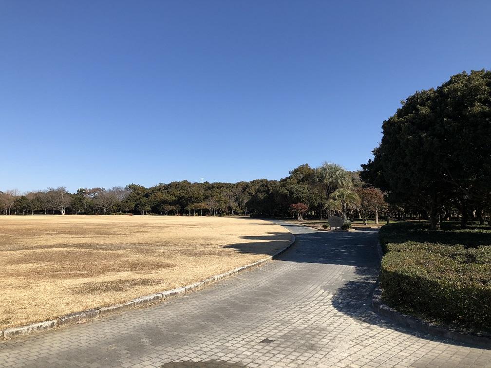 f:id:yamanashiiori:20180130075435j:plain