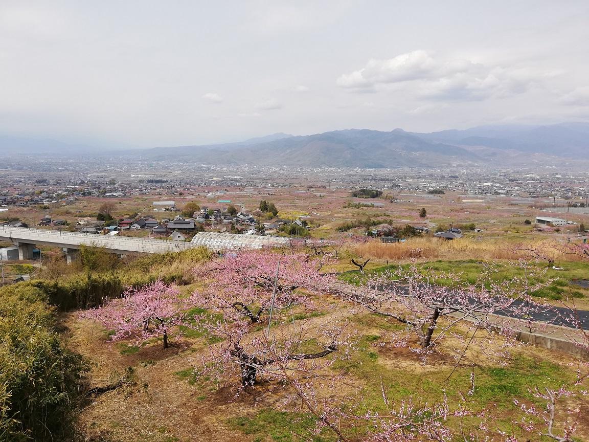 f:id:yamanashiiori:20190414210518j:plain