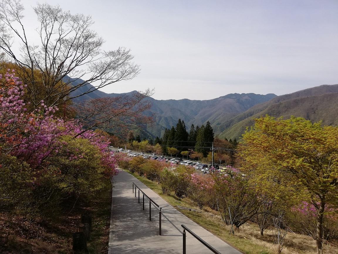 f:id:yamanashiiori:20190506221050j:plain
