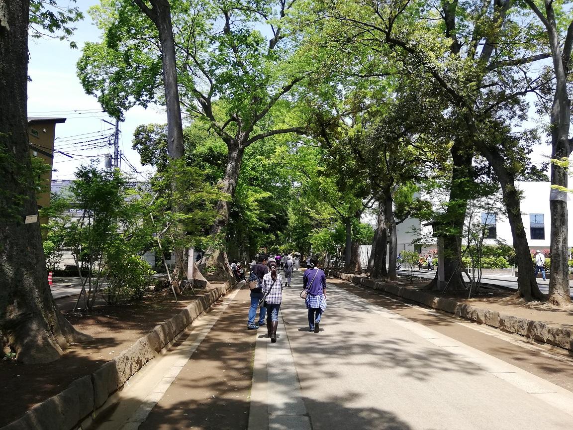 f:id:yamanashiiori:20190506221110j:plain