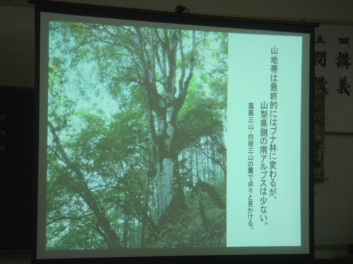 f:id:yamanashimidorisupport:20120526104735j:image:w640
