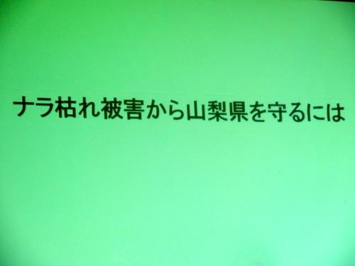 f:id:yamanashimidorisupport:20130823031510j:image