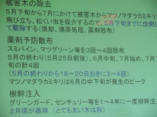 f:id:yamanashimidorisupport:20130823035702j:image