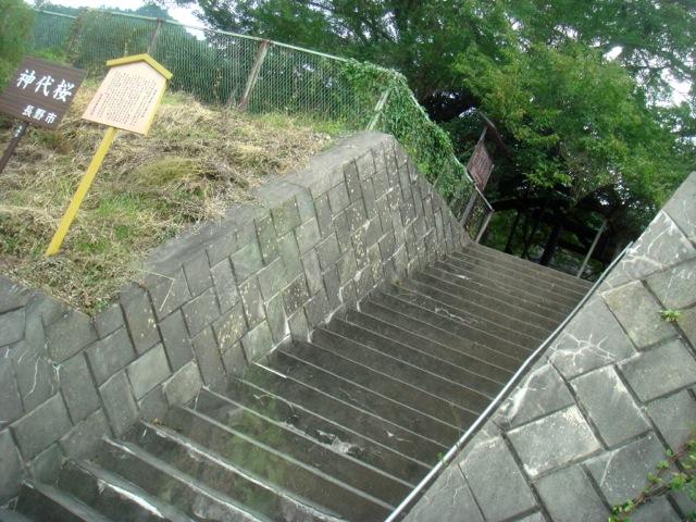 f:id:yamanashimidorisupport:20130922102014j:image:w500