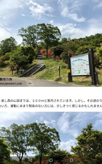 f:id:yamanashimidorisupport:20181202081827j:image