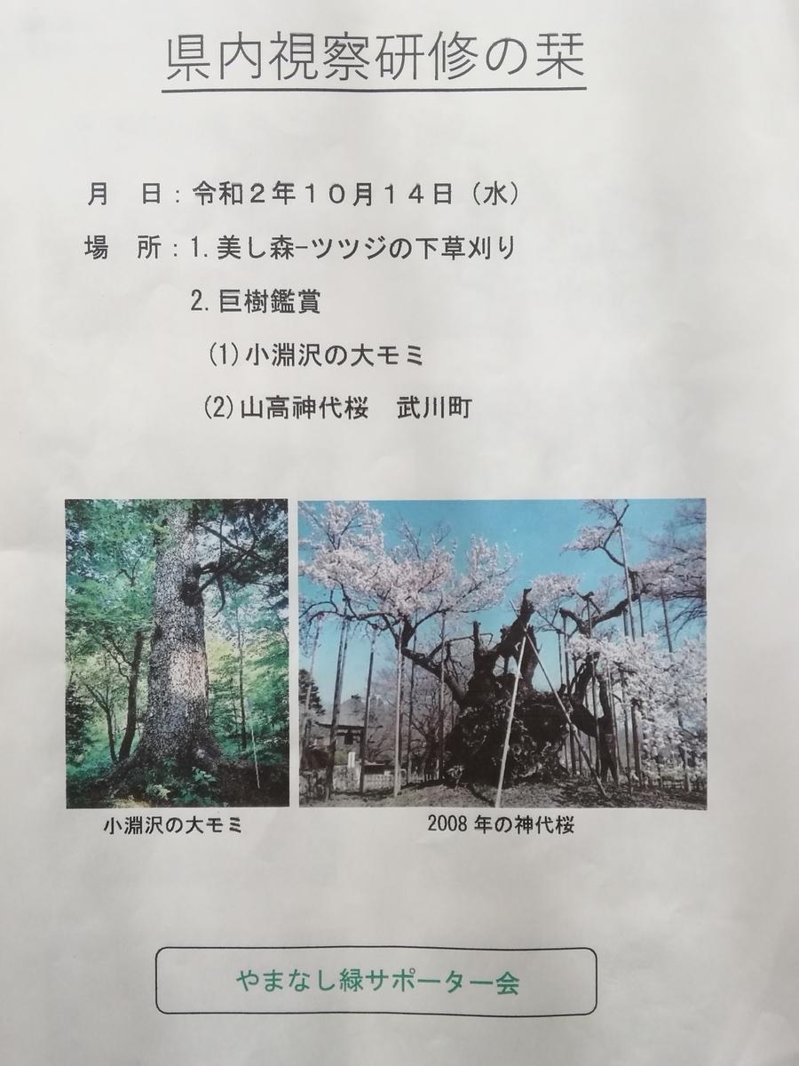 f:id:yamanashimidorisupport:20201029095155j:plain