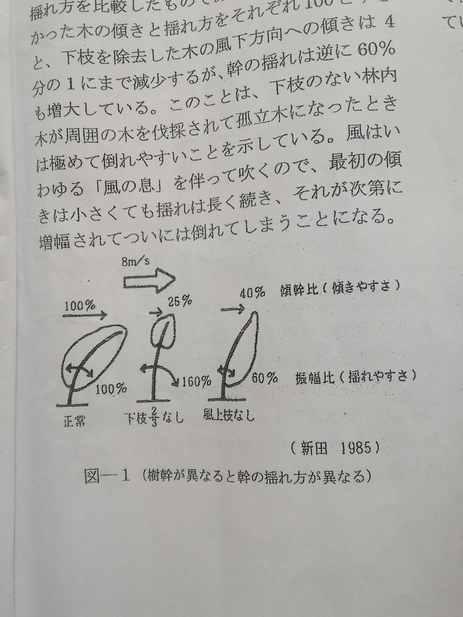 f:id:yamanashimidorisupport:20201124110116j:plain