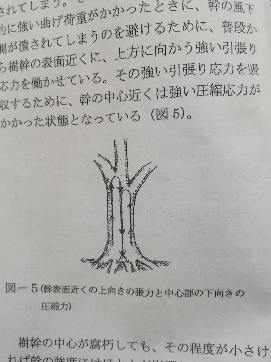 f:id:yamanashimidorisupport:20201124110139j:plain