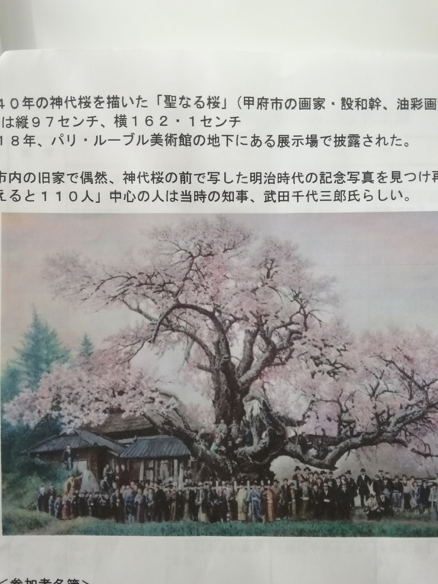 f:id:yamanashimidorisupport:20210127110756j:plain