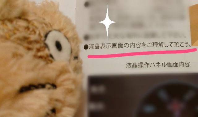 f:id:yamaneco0525:20210521150501j:image