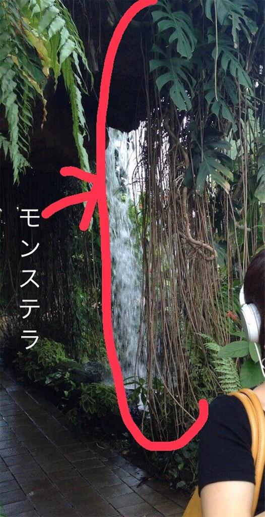 f:id:yamanekoMP:20200617130023j:image