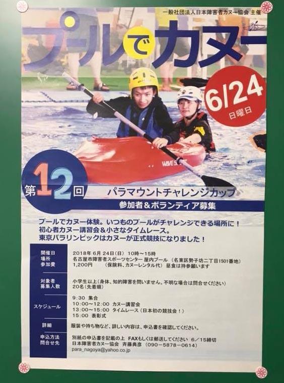 f:id:yamanekohanemuranai:20180625071631j:plain