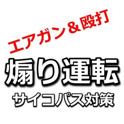 佐藤竜彦,宮崎文夫,煽り運転