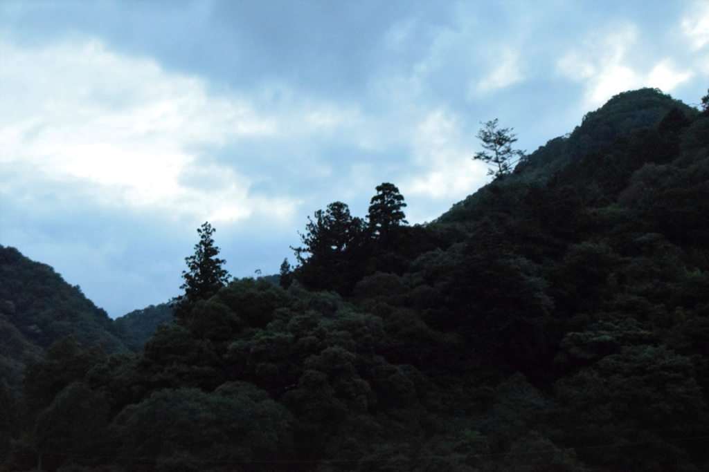 f:id:yamano-koumyouji:20160623112514p:plain