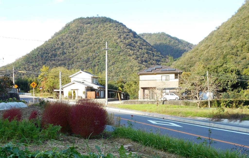 f:id:yamano-koumyouji:20161104122429p:plain