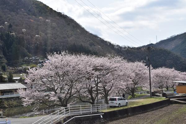 f:id:yamano-koumyouji:20170413202348p:plain