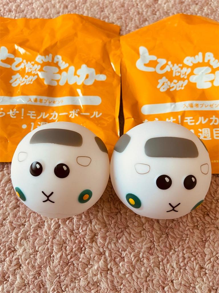 f:id:yamanobenokuma:20210722144529j:image