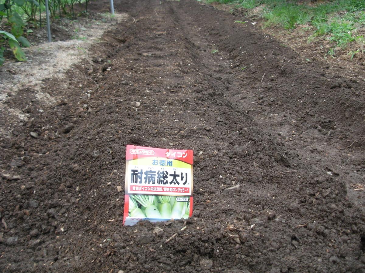 f:id:yamanoimokkoubou:20190825212113j:plain