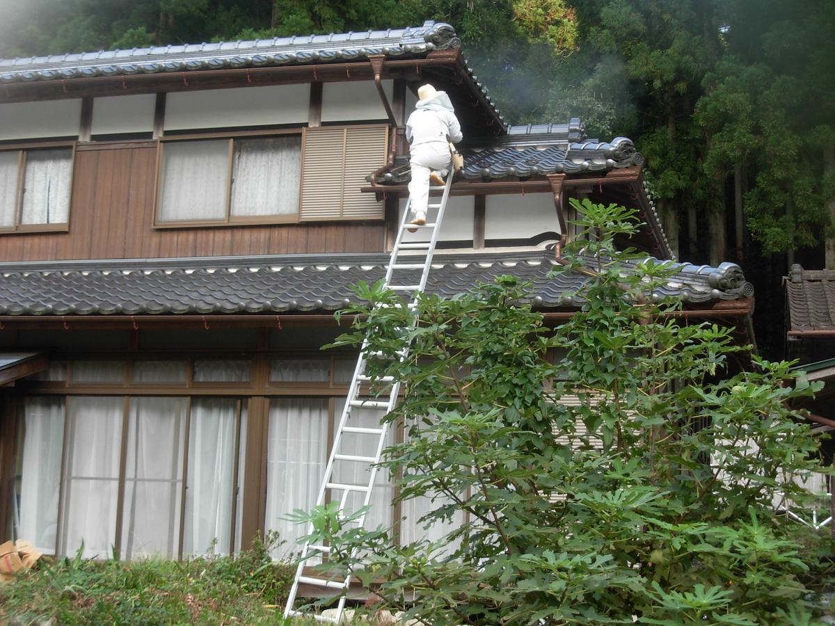 f:id:yamanoimokkoubou:20210925205608j:plain