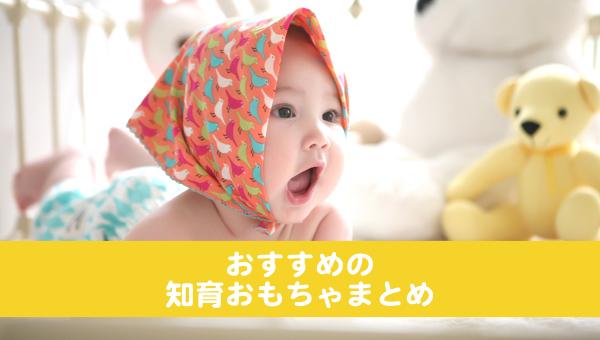 おすすめしたい赤ちゃんの知育おもちゃ
