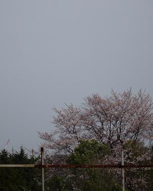 f:id:yamanoueunderground:20200324111118j:plain
