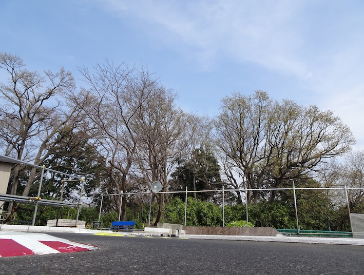 f:id:yamanoueunderground:20210322104051j:plain