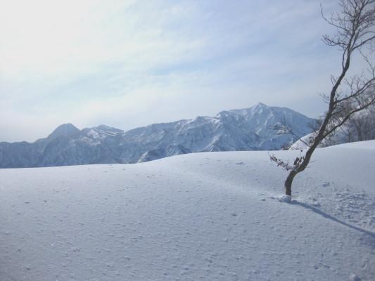 f:id:yamanouta:20091230120200j:image
