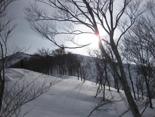 f:id:yamanouta:20100131092745j:image