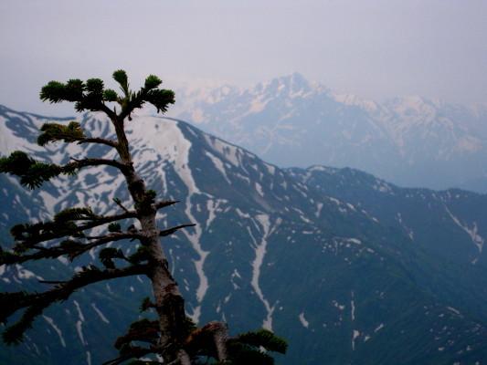 f:id:yamanouta:20100620063901j:image