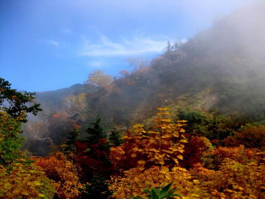 f:id:yamanouta:20101011113319j:image