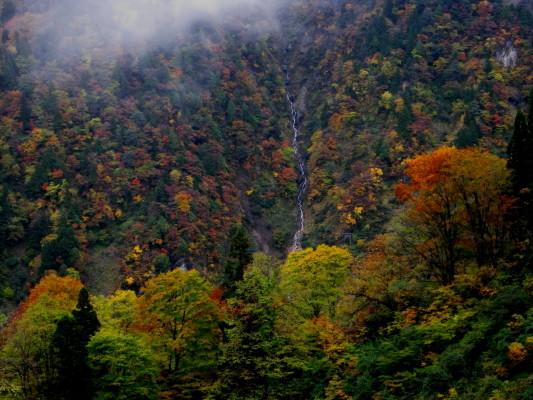 f:id:yamanouta:20101031085814j:image