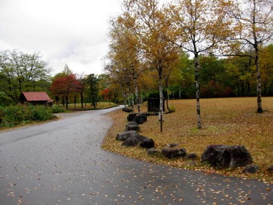 f:id:yamanouta:20101031093236j:image