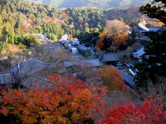 f:id:yamanouta:20101204152106j:image
