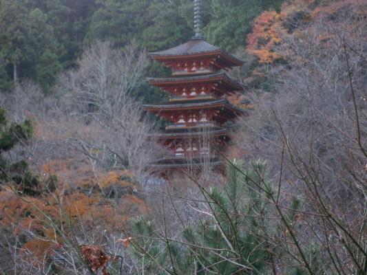 f:id:yamanouta:20101204152302j:image